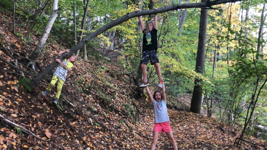 Dillon hanging from an overhanging tree- with Rayleigh under his legs.