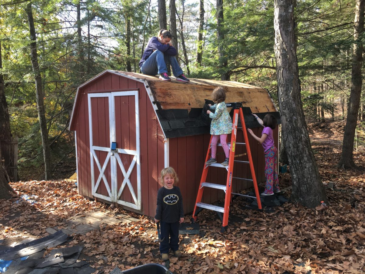 Barn shed getting a new roof